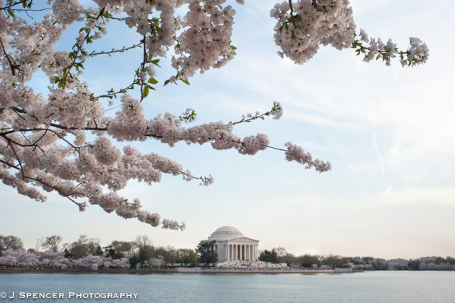 The Jefferson Memorial across Tidal Basin