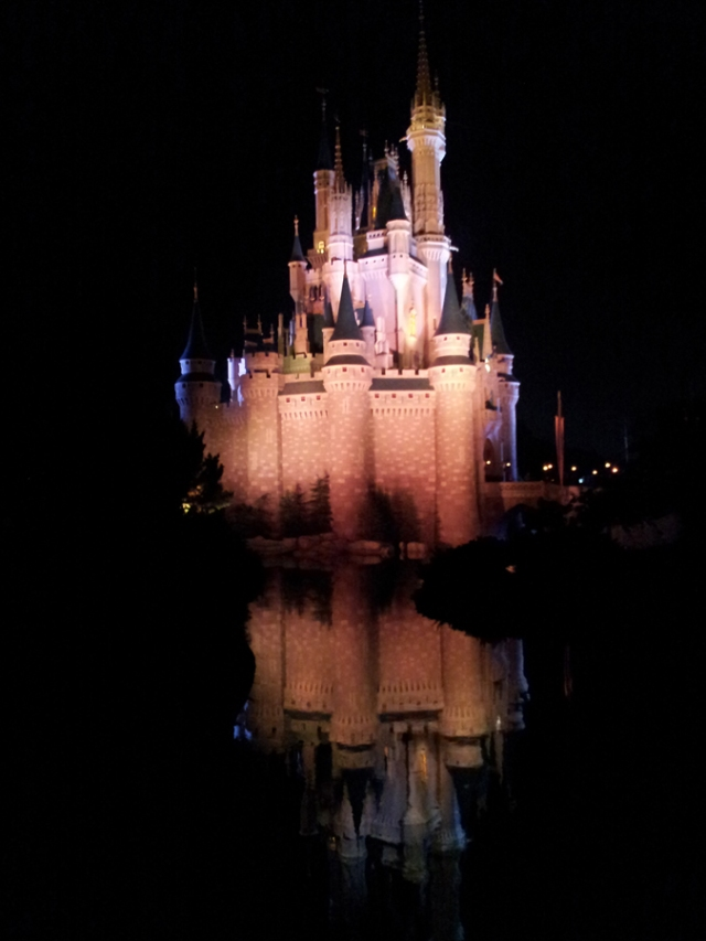 The princess's castle in Disney World