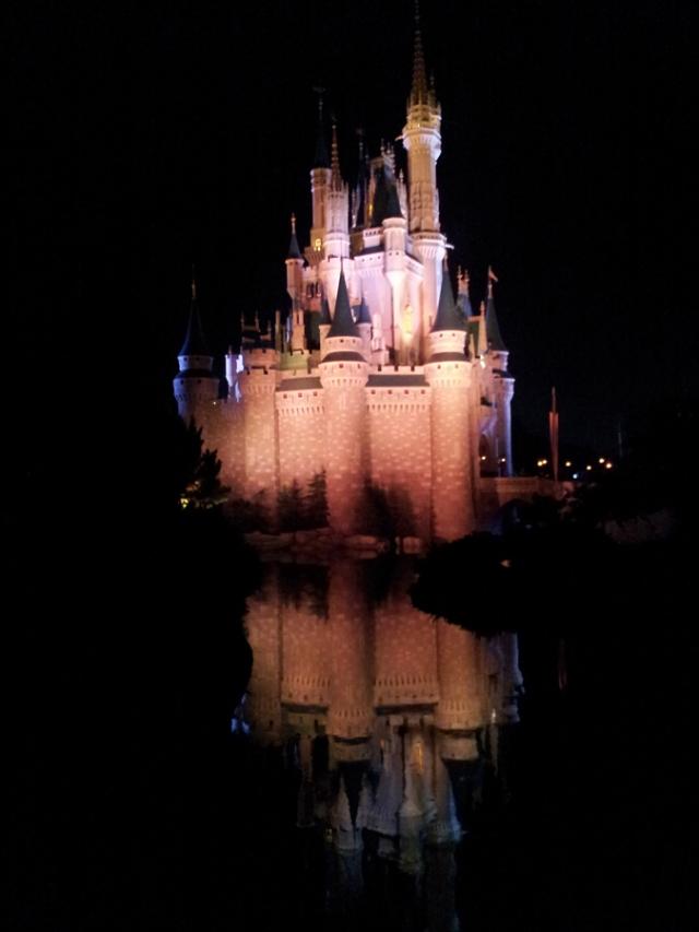 The princess's castle in Disney World