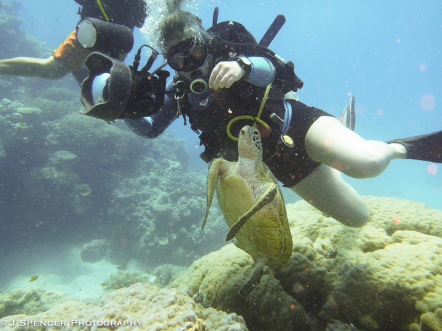 Lucy the dive boat photographer feeding the turtle. See how much debris the others are kicking up?  And the red dots from the lower quality housing?  Outer Great Barrier Reef.